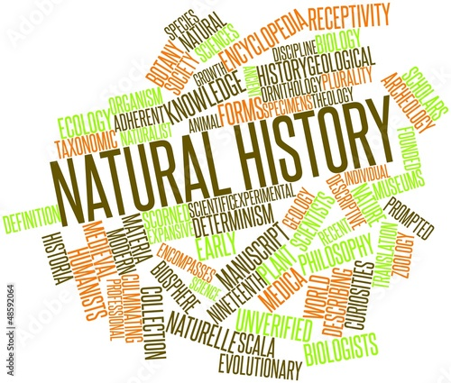 Word cloud for Natural history