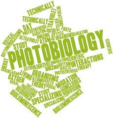 Word cloud for Photobiology