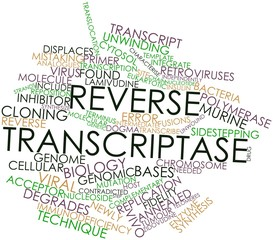 Word cloud for Reverse transcriptase