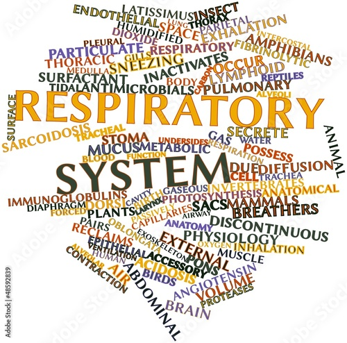 Word cloud for Respiratory system