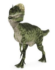 Monolophosaurus in search walk