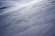Snow storm - 48598273