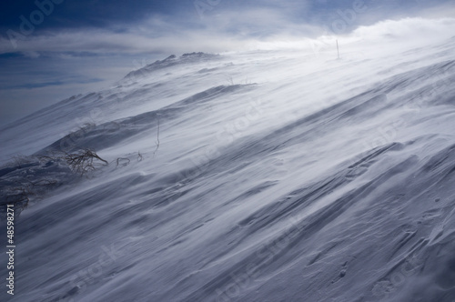 Snow storm - 48598271