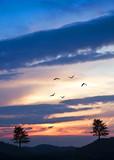 Fototapeta niebo - pejzaż - Wzgórze