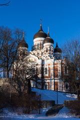 Alexander Nevsky Cathedral winter view