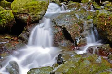 Foresta di  Vallombrosa, cascata 3