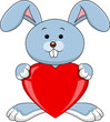 Funny rabbit holds love heart