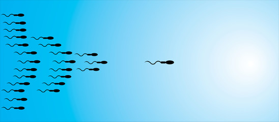 A sperm leading the way and other sperms following