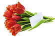 bunch of red tulips and an empty card