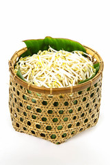 Bean Sprouts on basket