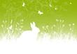 Osterhase, Osterkarte, Ostergruß, Grün, Frisch, Schmetterlinge