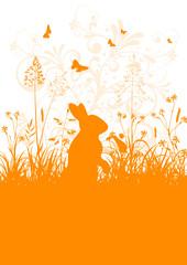 Osterhase, Osterkarte, Ostergruß, Orange, Frisch, Schmetterlinge