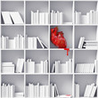 heart on the bookshelves