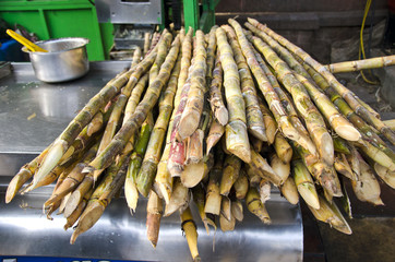 fresh sugarcane in Delhi bazaar, India
