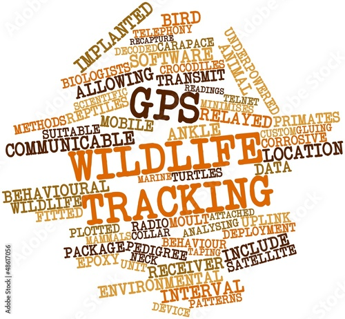 Word cloud for GPS wildlife tracking
