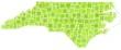 Map of North Carolina - Usa - in a mosaic of green squares