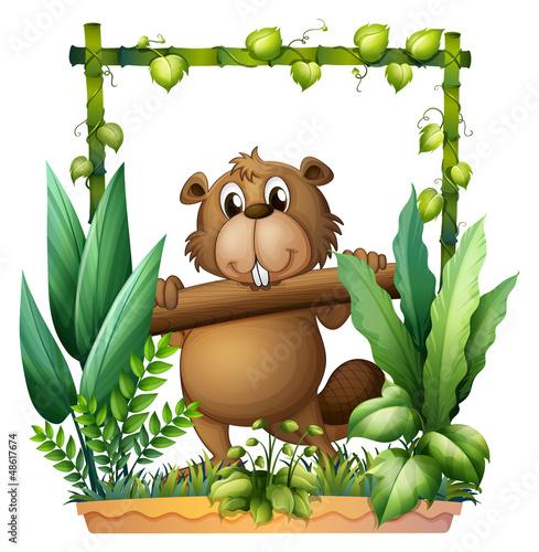A beaver carrying a log