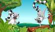 Lemurs in the jungle