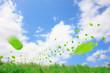 草原と葉っぱ