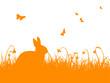 Osterwiese, Osterhase, Osterfest, Hintergrund, Vorlage, Orange