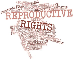 Word cloud for Reproductive rights