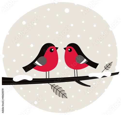 Winter birds sitting on the branch