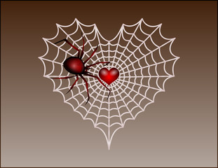 vector of a Valentine's Day heart shaped spider web