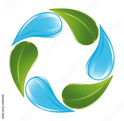poster of Plant and water cycle