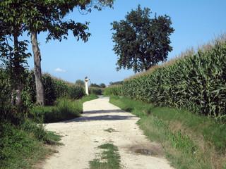 sentiero in campagna