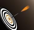 Dart and target