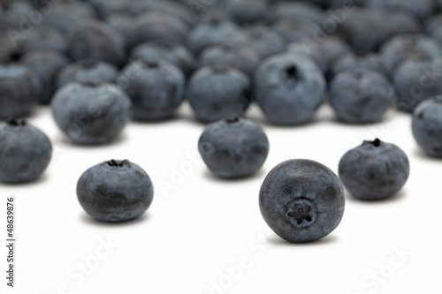Scattered blueberry on white background