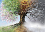 Fototapety Digital illustration of four seasons tree