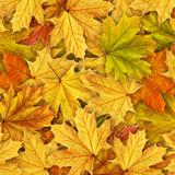Fototapety leaves