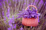 Fototapety Basket with a lavender