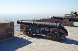 historical cannons on Mehrangarh Fort in Jodhpur, India