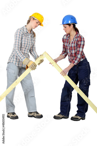 Female builders with a wooden apex