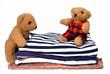 Haushaltstag mit Teddys