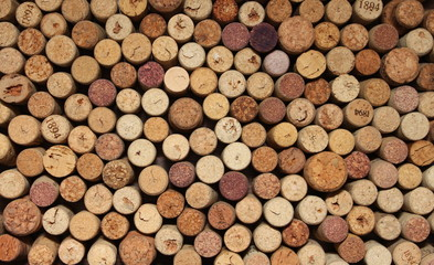 many different wine corks