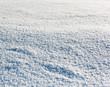 Snowy meadow