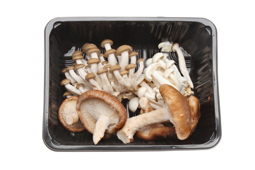 Mushrooms in a carton