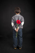Child holds red flower behind his back. Black background.