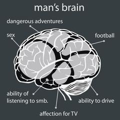 concept man's brain
