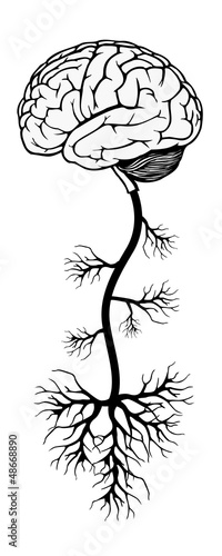 brain and tree. vector illustration