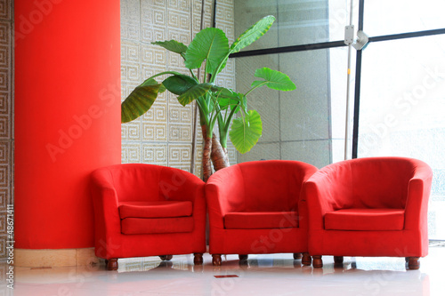 red sofa and green flowers in the hall