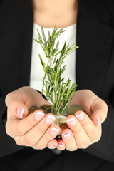 Woman hands with green plant and coins, close up.