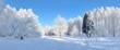 canvas print picture - Winter park