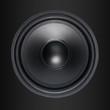 Speaker woofer on black