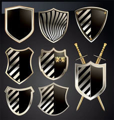 Gold and gray shield set