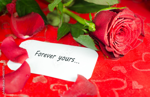 Rose with a message card.