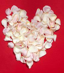 Heart from petals